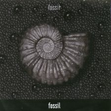 Fossil - Fossil