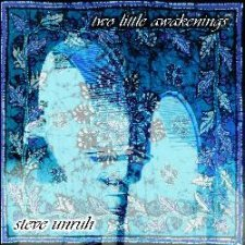 Steve Unruh - Two Little Awakenings (official version)