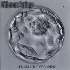 Different Strings - ...It's Only The Beginning