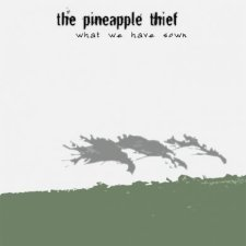 The Pineapple Thief - What We Have Sown