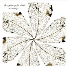The Pineapple Thief - 3000 Days