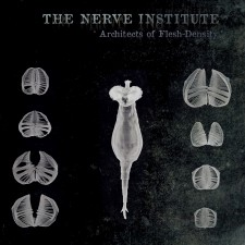 The Nerve Institute – Architects Of Flesh-Density