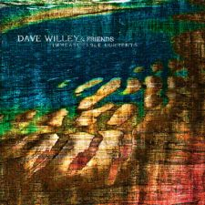 Dave Willey & Friends – Immeasurable Currents