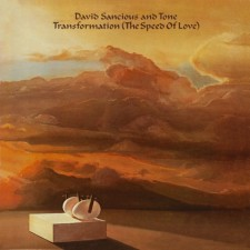 David Sancious and Tone - Transforamtion (The Speed of Love)