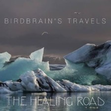 The Healing Road - Birdbrain's Travels