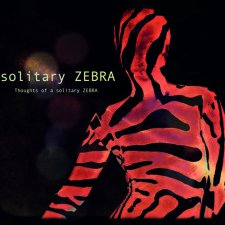 Solitary Zebra - Thoughts of a Solitary Zebra