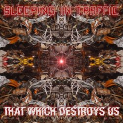 Sleeping In Traffic - That Which Saves Us